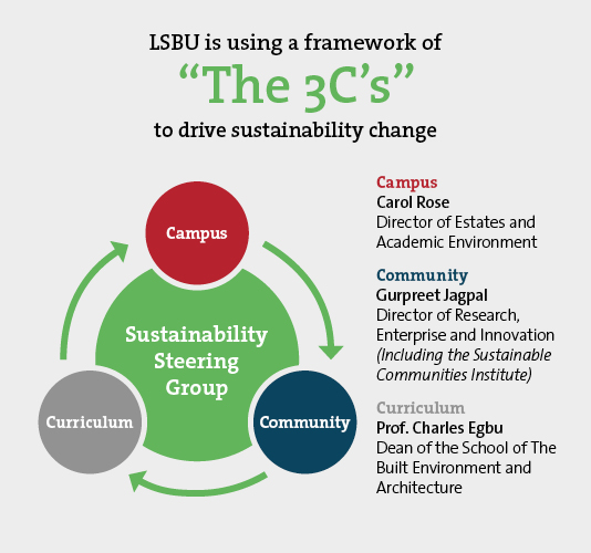 The 3C's framework to drive sustainability change
