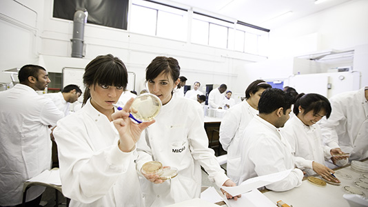 Students examining a petri dish in the microbiology lab