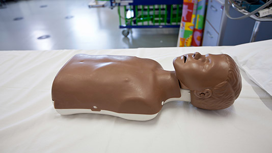 Anatomical dummy of a person's head and thorax