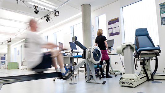 Exercise test in the Sports and Exercise Science laboratory