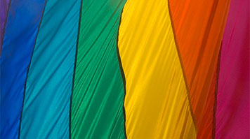 Rainbow flag representing the lesbian, gay and bisexual community