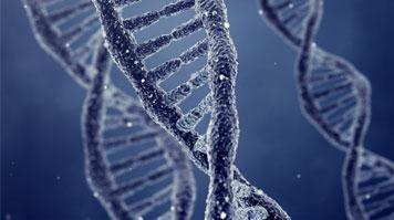 DNA Analyser