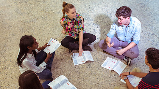 A team meeting of students