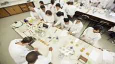 Scientists in a microbiology lab
