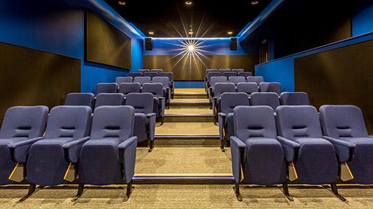 Screening Cinema