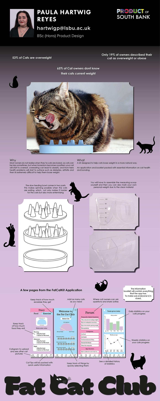 Cat Health by Paula Hartwig Reyes