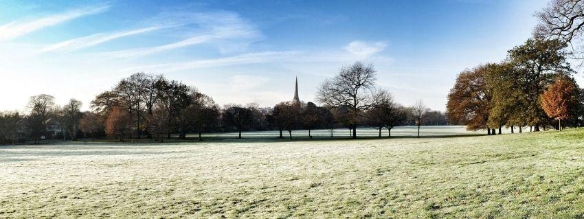 frosty morning park