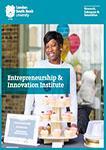 Entrepreneurship and Innovation Institute Brochure